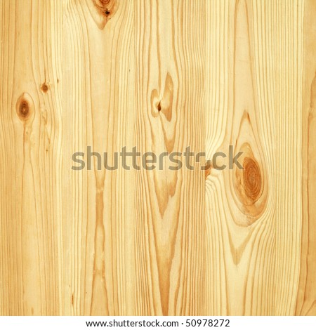 Pine tree wall texture - stock photo