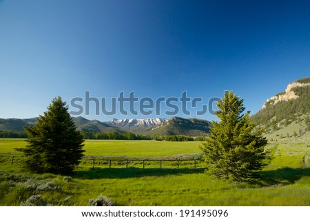 Pine trees frame a meadow in the mountains of Wyoming's north-west. - stock photo