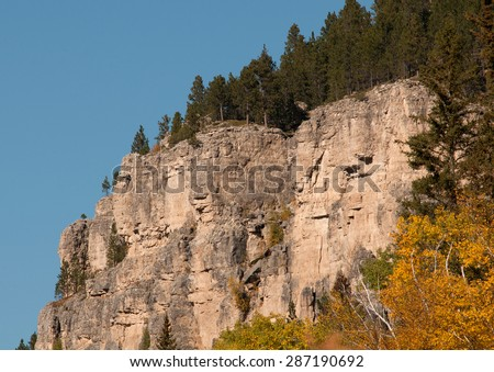Pine trees on top of cliff in Spearfish Canyon, Black Hills National Park, South Dakota - stock photo