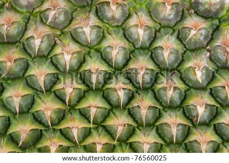 Pineapple skin close up - stock photo