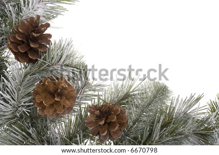 Pinecones on wreath with snow isolated on white - stock photo