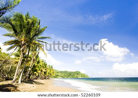 Pinfold Bay, Tobago - stock photo
