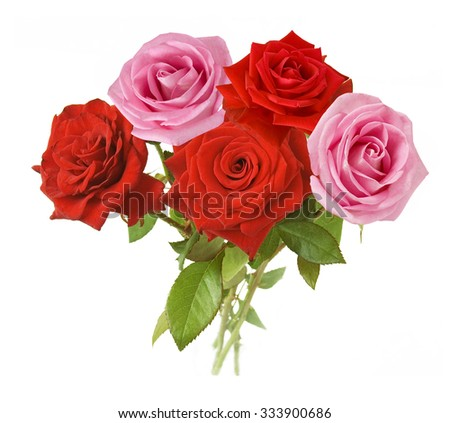 Pink and red roses bunch isolated on white background - stock photo