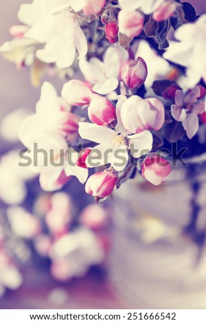 Pink and white flowers in a vase - stock photo