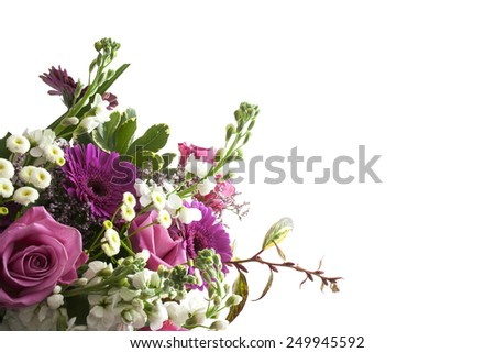Pink and white flowers isolated on a white background - stock photo