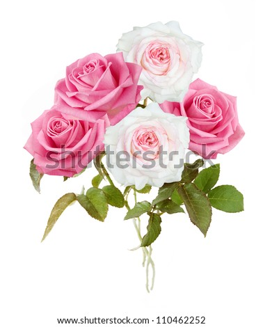 Pink and white roses bunch isolated on white background - stock photo