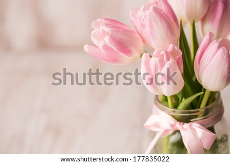 Pink and white Tulips Close Up with glass jar vase