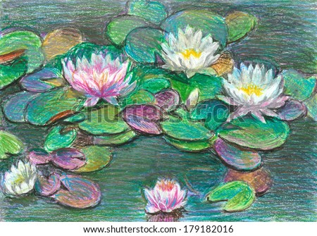 pink and white water  lilies, oil pastel - stock photo