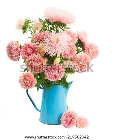 pink aster flowers bouquet in vase isolated on white background - stock photo