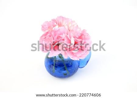 Pink carnation - stock photo