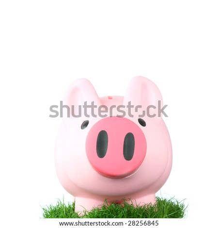 Pink coin bank (piggy bank or moneybox) sitting on grass - stock photo
