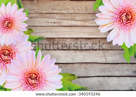 Pink daisy gerbera flowers on wooden background. Vintage tones. - stock photo