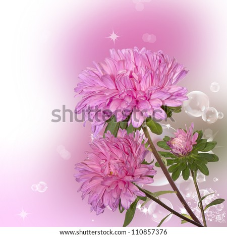Pink decorative autumn flowers over abstract background - stock photo