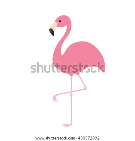 Pink flamingo. Exotic tropical bird. Zoo animal collection. Cute cartoon character. Decoration element. Flat design. White background. Isolated - stock photo