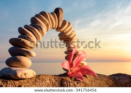 Pink flower of lily on the stones arch - stock photo