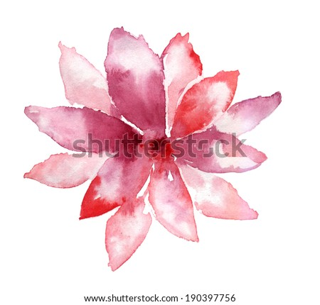 pink flower with petals on white background - stock photo