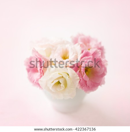 Pink flowers (eustoma) on pale  pink background. Shallow depth of field. Selective focus - stock photo