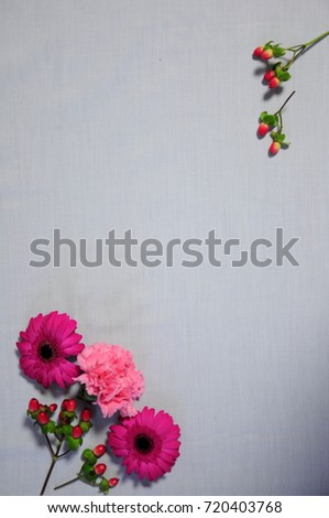 https://thumb9.shutterstock.com/display_pic_with_logo/167494286/720403768/stock-photo-pink-flowers-in-japan-720403768.jpg