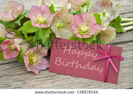 pink flowers with birthday card/birthday card/Christmas Rose - stock photo