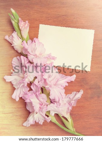 pink gladiolus on wooden background with card for text. vintage flower background