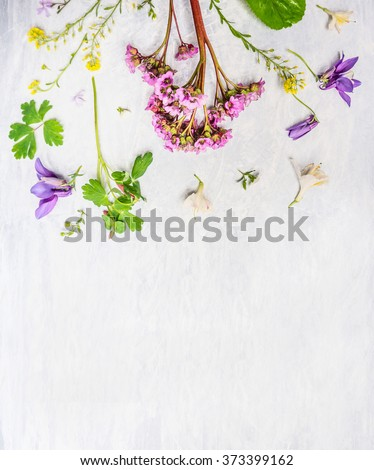 Pink, lilac and yellow spring or summer garden  flowers and plants on light wooden background, top view, border - stock photo