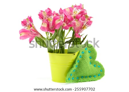 Pink lily flowers in a bucket and cushion heart isolated on white background. - stock photo