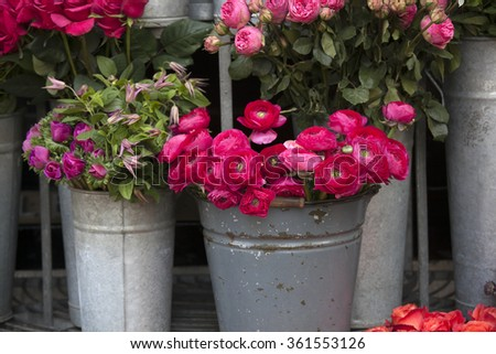 pink lupin for sale. persian buttercup flowers (ranunculus) - wedding arrangement - stock photo
