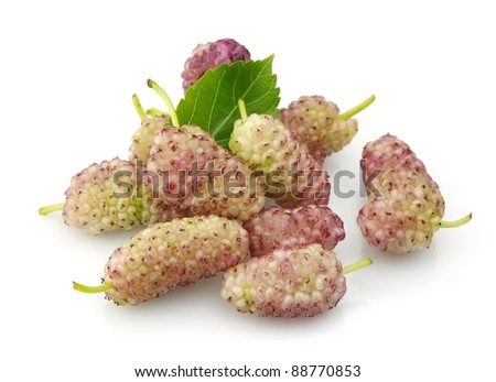 Pink mulberry with leaves on a white background - stock photo