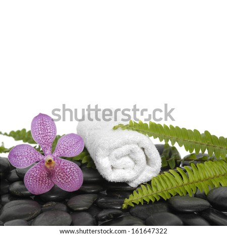 Pink orchid flowers with green fern and towel on pebbles  - stock photo