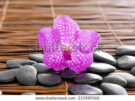 pink orchid with black stones on mat - stock photo