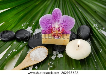 Pink orchid with stones ,salt in spoon,candle on green palm leaf - stock photo