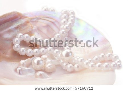 Pink pearls and necklace  in an oyster shell - stock photo