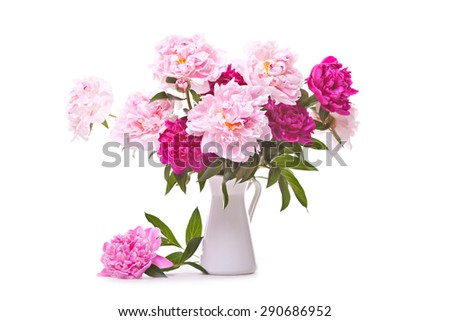 Pink peonies in vase on white background - stock photo