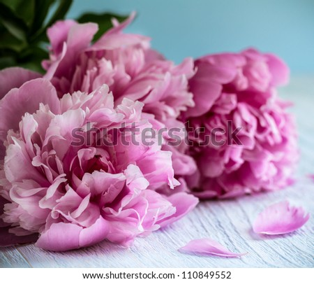 Pink peonies on aged wooden table - stock photo
