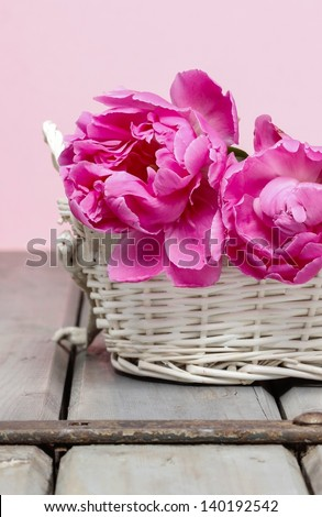 Pink peony flower in white wicker basket. Selective focus - stock photo