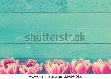 Pink peony tulips on vintage turquoise background with copy space. Post card, gift card template. Wedding, birthday, spring and summer concept - stock photo
