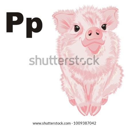 pink pig and black letters p