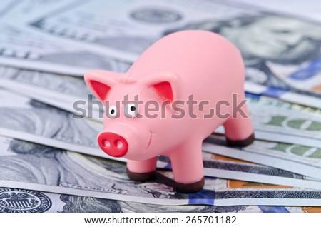 Pink pig on the new 100 dollar bills - stock photo