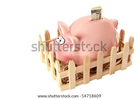 Pink piggy bank with dollar - stock photo