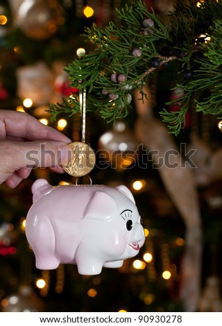 Pink piggybank hanging from branch of christmas tree with a hand putting a gold coin into the savings bank - stock photo