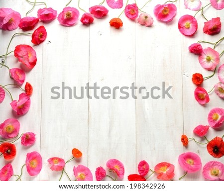 Pink poppies on white wooden background - stock photo