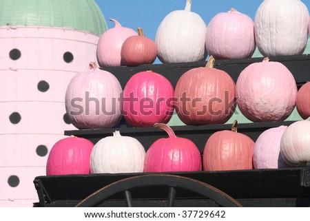 Pink Pumpkins - stock photo