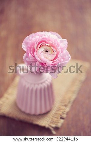 Pink ranunculus in a vase - stock photo