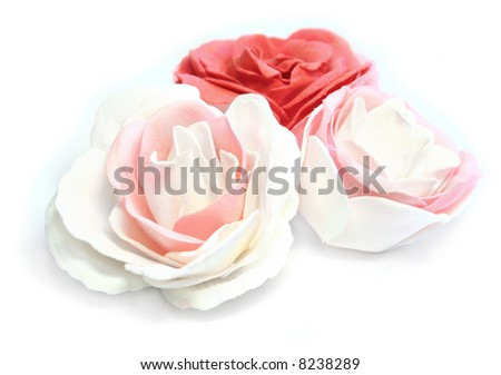 Pink, red and white roses on white background