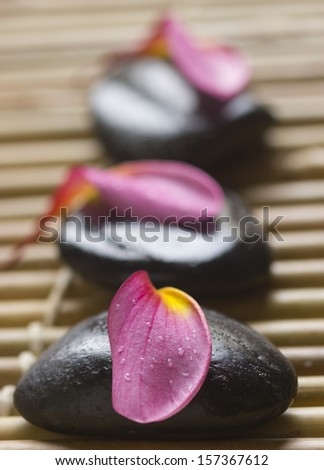 Pink/red frangipani with zen stone - stock photo