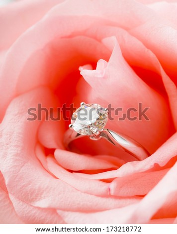 Pink Rose and diamond ring - stock photo