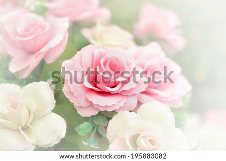 Pink rose bouquet with soft filter style - stock photo
