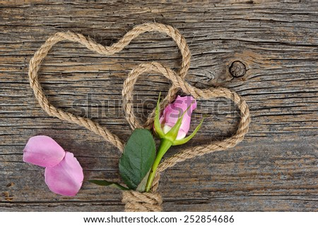 pink rose bud with loose petals on rustic barn wood with rope hearts - stock photo