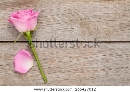 Pink rose flower and petal over wooden table with copy space - stock photo
