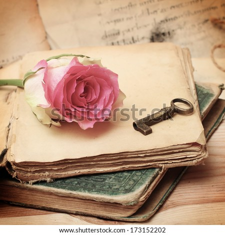 pink rose on an old book (vintage)  - stock photo